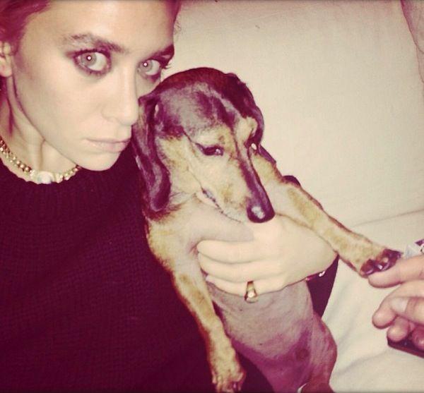 ley-Olsen-7-Seven-Stylish-Shots-of-Ashley-With-Her-Dogs-Instagram-Dachshund-Wiener-Dog